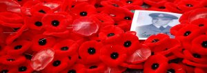 Poppies_by_Benoit_Aubry_of_Ottawa